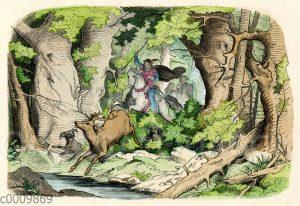 Jagd auf einen Rothirschen
