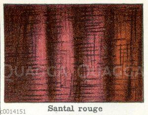 Holzart: Rotes Sandelholz