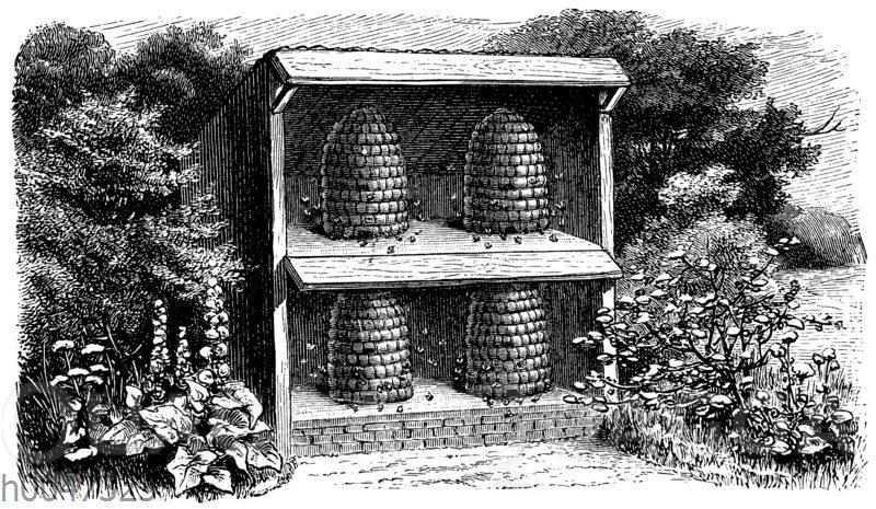 Bienenkörbe in einem Bienenhaus