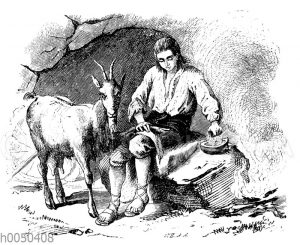 Robinson Crusoe als Tierarzt