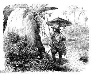 Robinson Crusoe findet statt des Zeltes einen Termitenhügel
