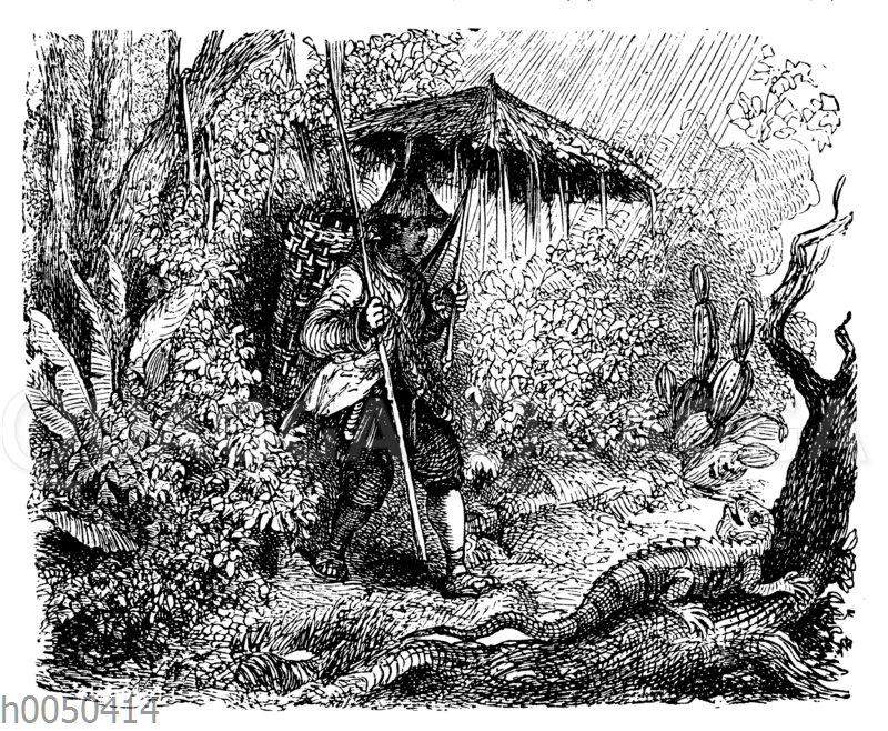 Robinson Crusoe und der Leguan