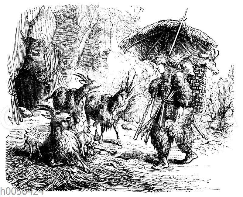 Robinson Crusoe und die kleinen Ziegen