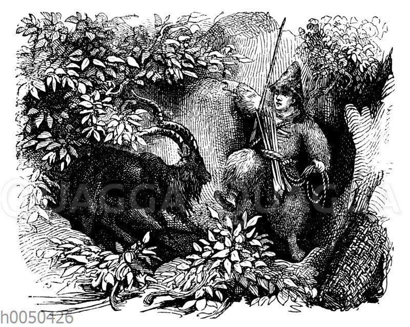 Robinson Crusoe und der Ziegenbock