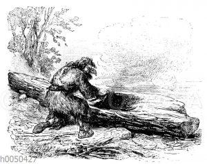 Robinson Crusoe beim Kahnbau