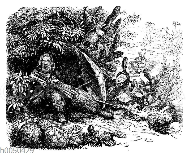Robinson Crusoe wieder auf seiner Insel