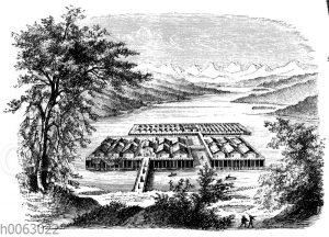 Rekonstruiertes Pfahldorf am Züricher See