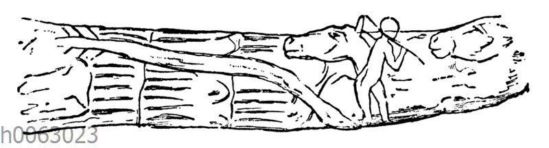Mensch und Pferde: Prähistorische Zeichnung