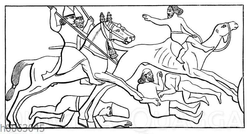 Verfolgung eines Kamelreiters