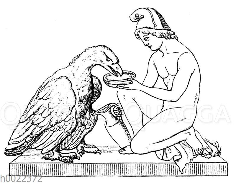 Ganymed mit dem Adler. Nach Thorwaldsen