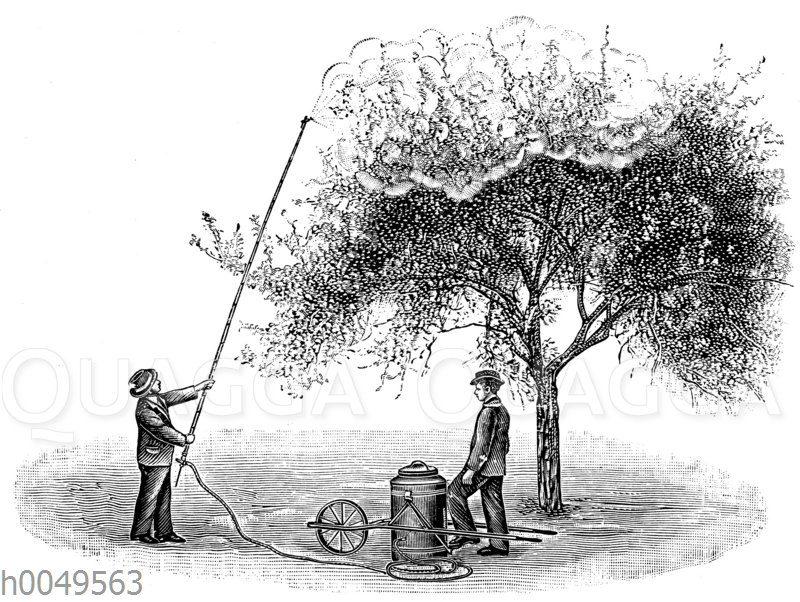 Kleine fahrbare Baumspritze