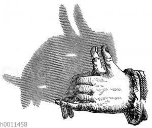 Schattenspiel: Ziegenbock