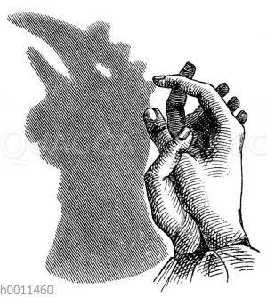 Schattenspiel: Hahn