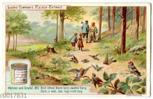 Hänsel und Gretel: Vögel picken die von Hänsel verstreuten Brotkrumen auf