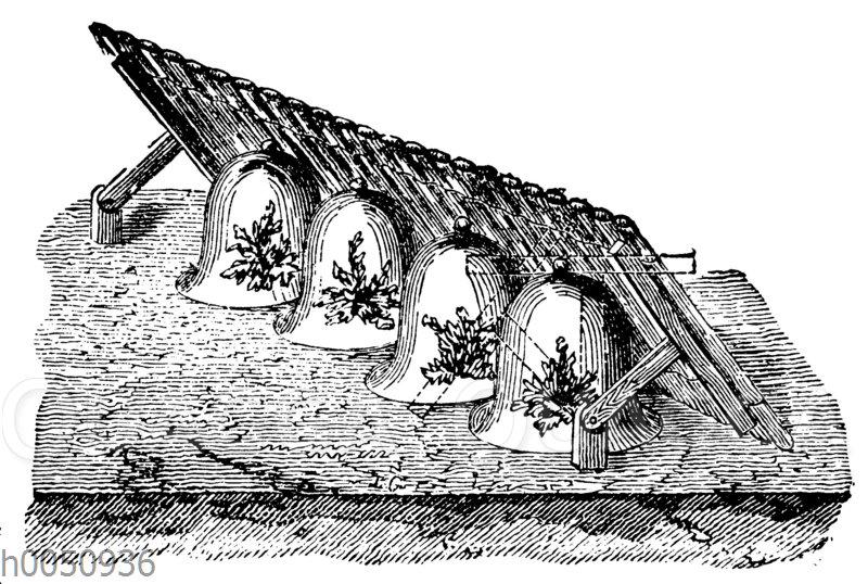 Schutzglocken für kälteempfindliche Pflanzen