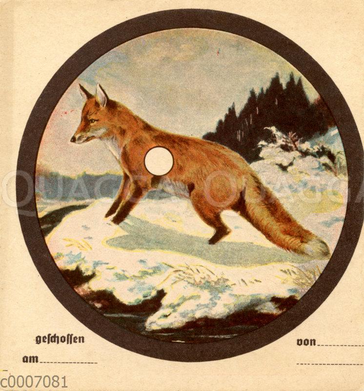 Schießscheibe: Fuchs