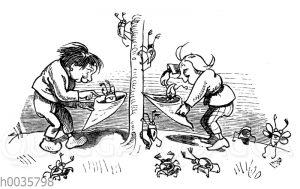 Max und Moritz sammeln Maikäfer