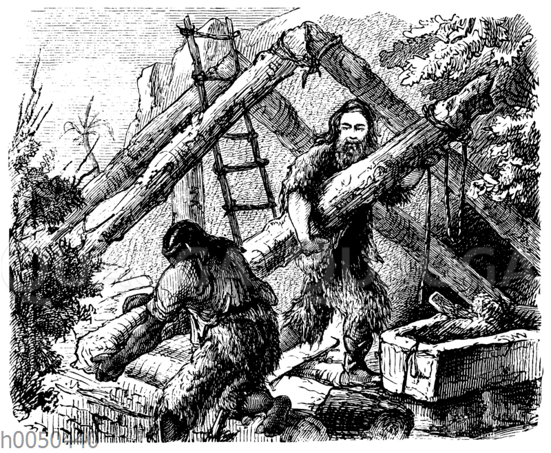 Robinson Crusoe: Das Richten des Hauses