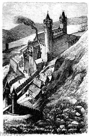 Schlos Ehrenfels am Rhein