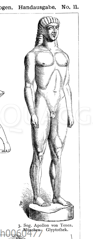 Sog. Apollon von Tenea. München. Glyptothek