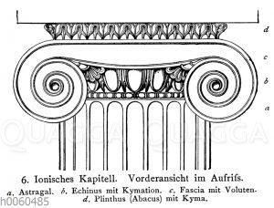 Ionisches Kapitell
