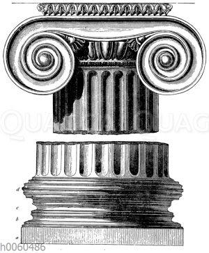 Basis und Kapitell der ionischen Säule