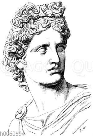 Kopf des Apollon vom Belvedere