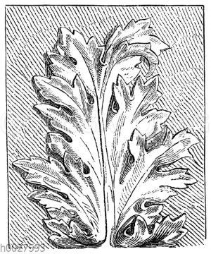 Akanthusblatt aus der römischen Kaiserzeit