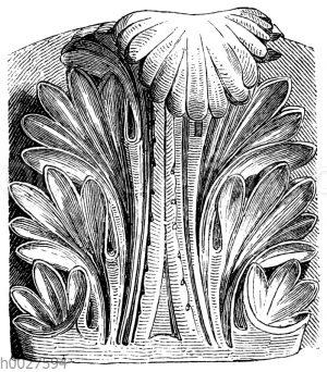 Akanthusblatt vom Pantheon
