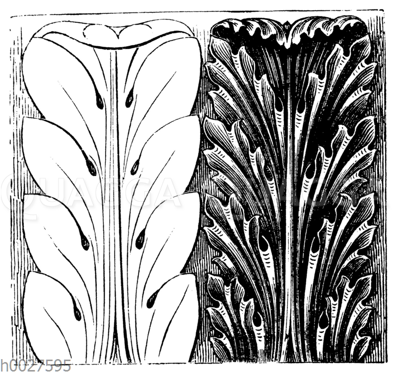 Akanthusblatt der Renaissance