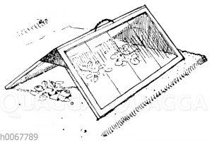 Glasdach zum Abdecken von Gurken