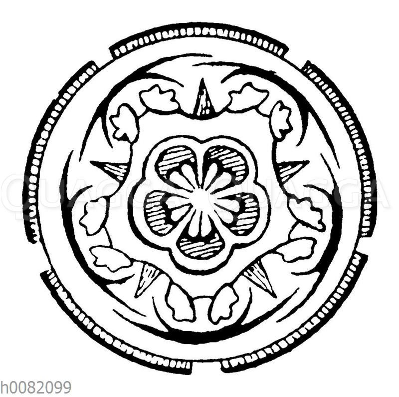 Steruliaceae (Theobroma)