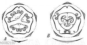 Ecballium (Oucurbitaeeae)