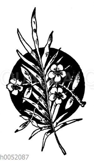 Vignette: Palmzweig und Blumen