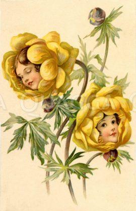 Mädchengesichter in Anemonenblüten